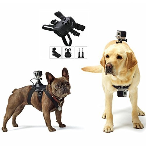 Action Harness (PULUZ Hound Dog Harness Adjustable Chest Strap Mount Belt Fetch Mount for GoPro HERO 6/5 /5 Session /4 Session /4/3+ /3/2 /1, Xiaoyi and Other Action Cameras (Dog Harness))