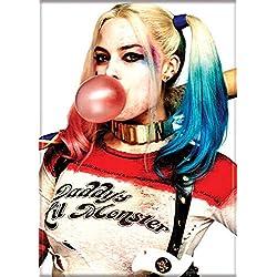 51jaUHZDhPL._AC_UL250_SR250,250_ Harley Quinn Magnets