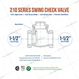 Midline Valve 432U334-5 Swing Check Valve, Backflow