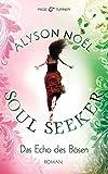 Das Echo des Bösen: Soul Seeker 2 - Roman
