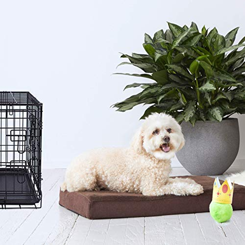BarkBox Small Brown 3 Inch Tall Orthopedic Memory Foam Dog Bed or Crate/Kennel Mat - Removable Washable Fleece Cover - Free Surprise (West Highland Terrier And Poodle Mix For Sale)