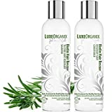 Organic Shampoo and Conditioner: Biotin Rosemary Mint for Thickening Fine or Thinning Hair. Sulfate Free, Safe for Keratin and Color Treated Hair. Invigorating Natural Anti Dandruff Hair Treatment.