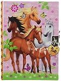 Hot Focus Enchanted Horse Diary with Lock & Keys
