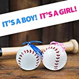 Gender Reveal Baseball with Pink and Blue Powder