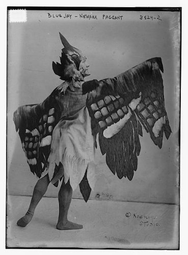 Theatrical Costumes Uk (Photo: Blue Jay - Newark Pageant,costume,theatrical,Bain News Service)