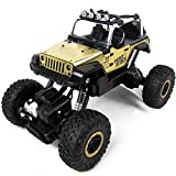 TOYEN GordVE GV641 1/18 Scale Electric RC Car Offroad 2.4Ghz 2WD High Speed 35+MPH Remote Controlled Car Truck-Yellow