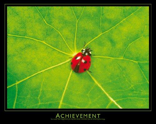 Achievement Poster - Achievement - Ladybug 16