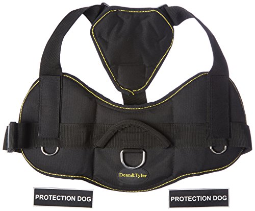Dean & Tyler Fun Works Protection Dog Harness with Padded Chest Piece, X-Large, Fits Girth Size: 34-Inch to 47-Inch, Black with Yellow Trim by Dean & Tyler
