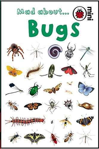 Mad About Bugs (Ladybird Minis)