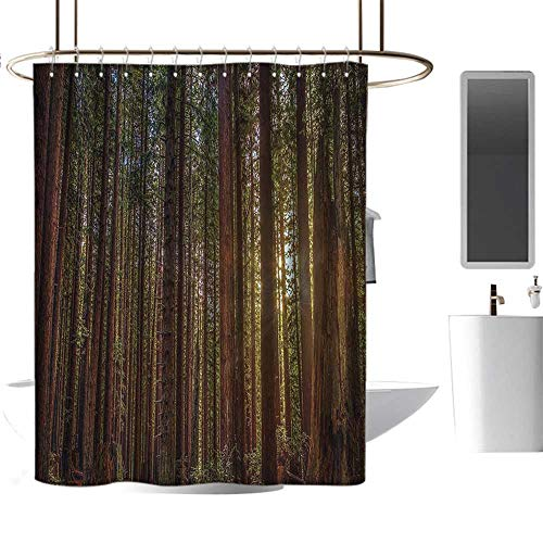 (Shower Curtains for Bathroom Plastic California Tree Nature,Redwood Forest in California and Sunset Picture Print,Green and Brown,W36 x L72,Shower Curtain for Small Shower stall)
