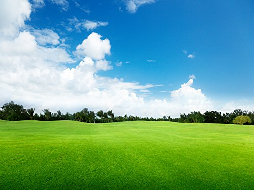 DZJYQ 6.5x5ft(2x1.5m) Blue Sky White Cloud Green Forest Tree Grass Golf Course Scenery Backdrop Photography Background 30