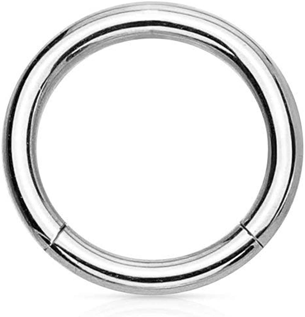 Forbidden Body Surgical Steel Hinged Nose Ring Hoop 14G 16G 18G, Silver/Gold/Rose Gold/Rainbow/Black (Sold Individually)
