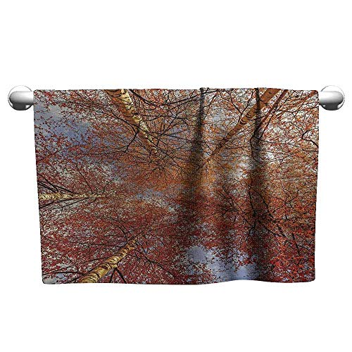 DUCKIL Custom Towel Forest Home Decor Fall Birch Trees Rural Oak in Woodland Peace Environment Park Foliage Picture Custom Bath Towel 27 x 14 inch - Oak Rack Woodland Coat