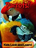 Parrots! Learn About Parrots and Enjoy Colorful Pictures - Look and Learn! (50+ Photos of Parrots)