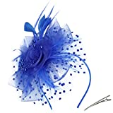 Fascinators Hat for Woman Girls Feathers Flower Mesh Ribbons Headband Hair Clip for Tea Party Headwear - Blue