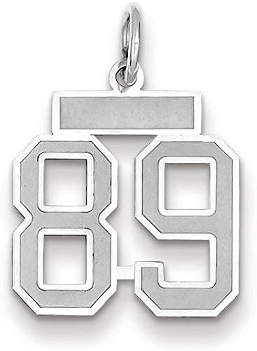 14k White Gold Small Satin Number 89 Charm