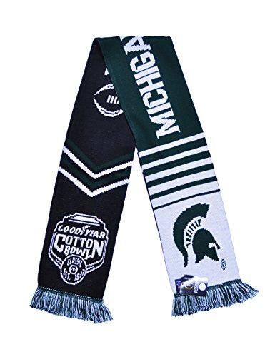 Michigan State Bowl - 8