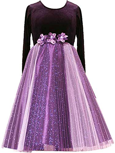 Rare Editions Big Girls Tween 7-16 Purple Stretch Velvet and Sparkle Tulle Long Sleeve Dress, Eggplant, 8