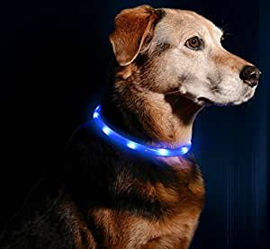 LED Dog Necklace Collar - USB Rechargeable Loop - Available in 6 Colors - Makes Your Dog Visible, Safe & Seen