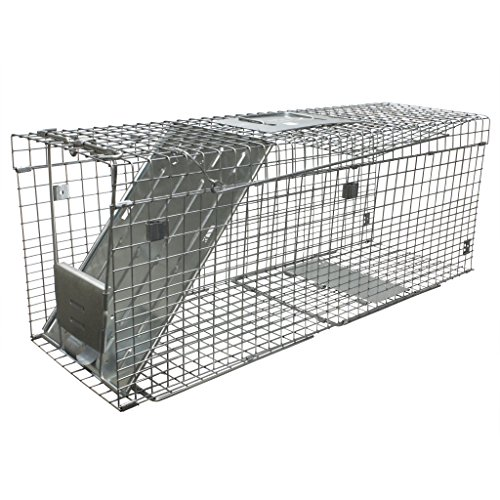 Havahart Collapsible Large Animal Cage Trap