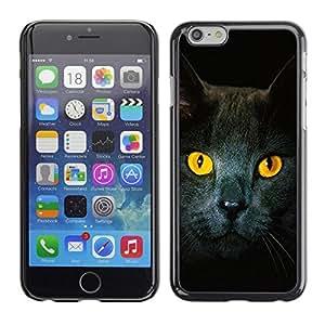 TopCaseStore / la caja del caucho duro de la cubierta de protección de la piel - Cat Yellow Eyes Grey British Shorthair - Apple iPhone 6