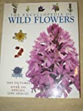 THE ENCYCLOPEDIA OF WILD FLOWERS(1000 PICTURES, OVER 350 SPECIES)