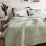 3 pieces Quilt Set Solid Color Lightweight Hypoallergenic Microfiber Comforter with 2 matching pillo
