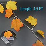 Trasfit 2 Pack Battery Powered Lighted Fall Garland 4.5FT 10 LED Autumn Maple Leaves Garland - (Warm White)