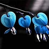 super1798 10Pcs Perennial Herbs Dicentra Spectabilis Flower Seeds Heart Shape Plant - Blue