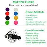 Aromatherapy Car Essential Oil Diffuser Stainless