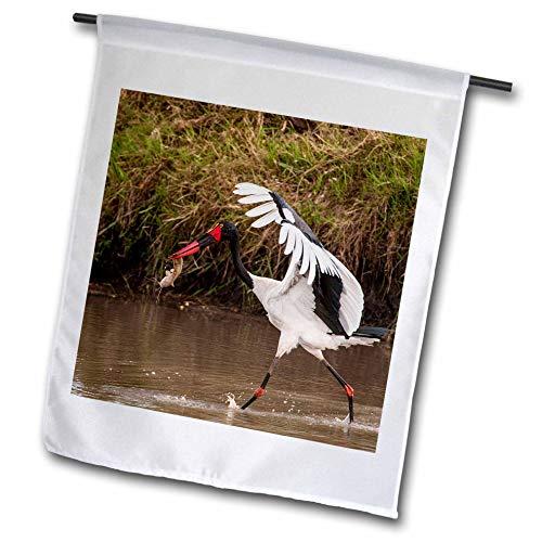 3dRose Danita Delimont - Storks - Kenya, Saddle-Billed Stork, with Fish - 12 x 18 inch Garden Flag (fl_310437_1)