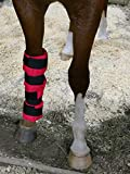 Rural365 Cooling Gel Ice Boot for Horses