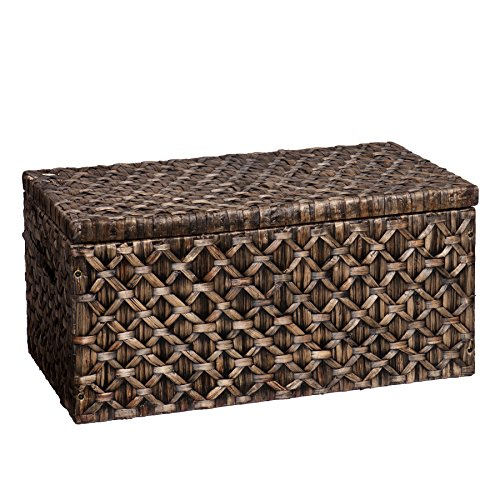Southern Enterprises AMZ6210KC Storage Trunk, Blackwashed