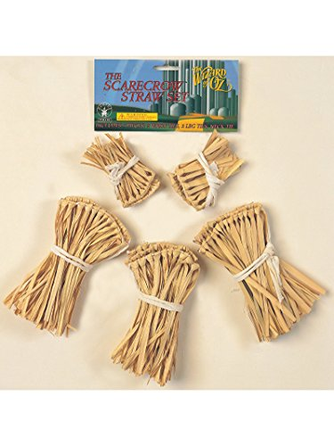 Wizard of Oz Straw Kit Costume Accessory -