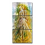 Tooarts Original Ballet Girl Modern Aluminum Wall Art 3-Panels Hanging Artwork for Home Decoration 24''x47''