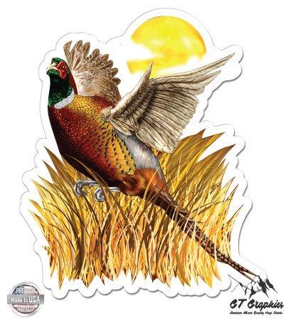 Pheasant - 3