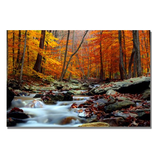 Canvas Wall Art, 30x47-Inch