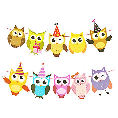 Party Owl Decorations (Party Banners, 2 Pack)