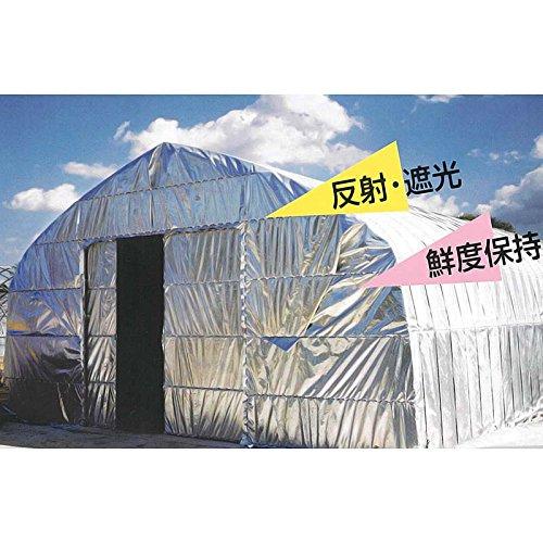 テクミラー #2000 断熱シート 193cm×100m ダイオ化成 遮熱 遮光 反射 ビニールハウス タ種代不 B01J7AYIL0