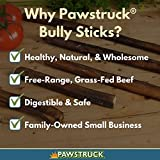"""12"""" Straight Bully Sticks for Dogs [X-Large"""