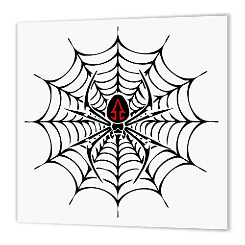 3dRose ht_58923_3 Black Widow Spider in a Web-Iron on Heat Transfer Paper for White Material, 10 by 10-Inch ()