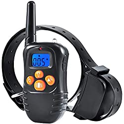 BIG DEAL Dog Training Collar with Remote, 1000FT Range Rechargeable Waterproof Dog Training Collar for Small Medium Large Dogs (for 1 Dog)
