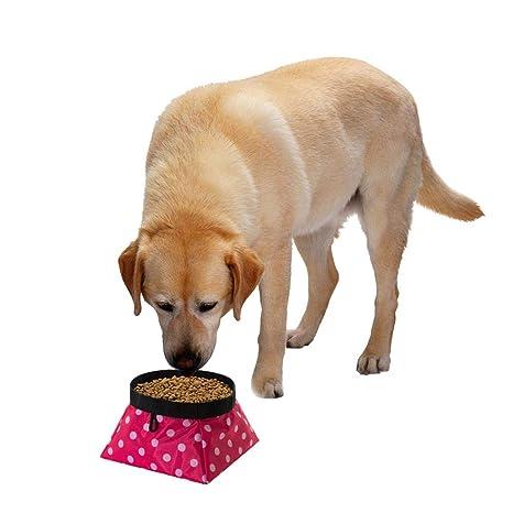 Gato Perro Bebiendo Bowl Plegable Impermeable Mascotas Perros Gatos Agua Alimentos Bowl Alimentador para Viajes Al