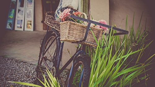 Home Comforts LAMINATED POSTER Basket Bicycle Bike Vintage Poster Print 24 x 36 by Home Comforts
