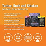 Vital Cat Freeze-Dried Grain Free Turducken 3 Pack: Turkey Entrée (12 oz.), Duck Liver Treats (.9 oz) , and Chicken Hearts Treats (.8 oz) 10