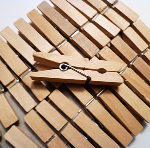 Sturdy Small Craft Clothespins 1 3/4