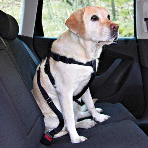 Trixie 1290 Auto-Sicherheitsgeschirr, S: 30-60 cm