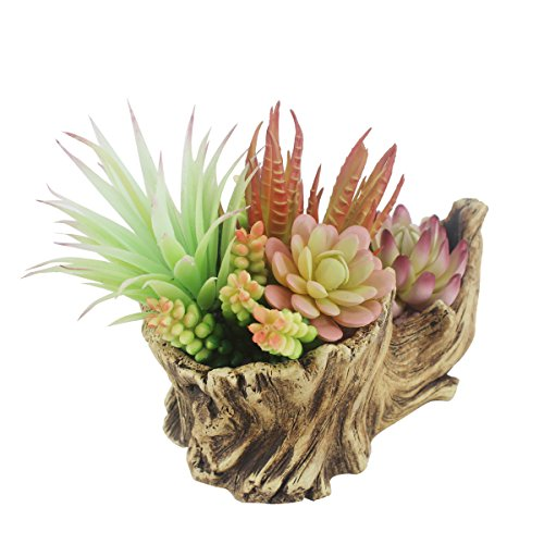 Greatflower Fake Resin Driftwood Stump Pot with Artificial Succulent Arrangement by Greatflower (Image #3)
