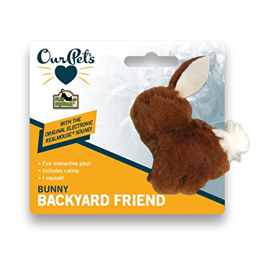 OurPets-Play-N-Squeak-Backyard-Bunny-Catnip-Cat-Toy