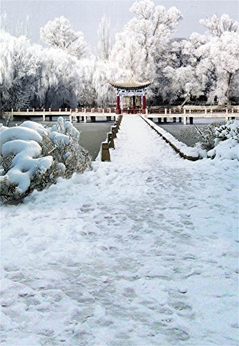Laeacco Vinyl Thin Backdrop 3x5FT Photography Background Feature Pavilion Classical Archtecture Wood Bridge Water Garden Winter View Snowfield Portraits Background 1(W)x1.5(H)m Photo Studio - Shops Watergardens